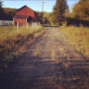 Finding a farm.