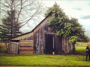 Ohio has barns.