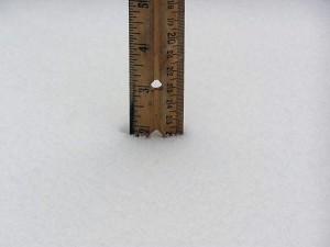 20090226_snowstick_33
