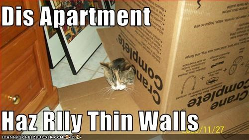 thin walls meme