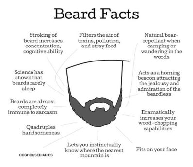 """Beard Facts"" brought to you by one of today's brave contestants."