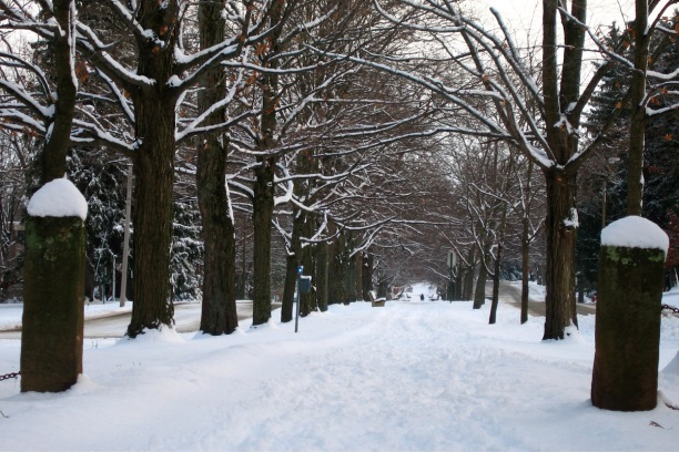 middle-path-winter-1