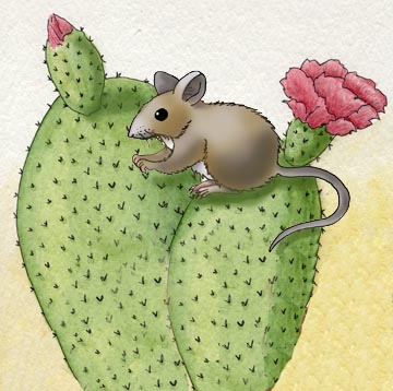 mouse_cactus