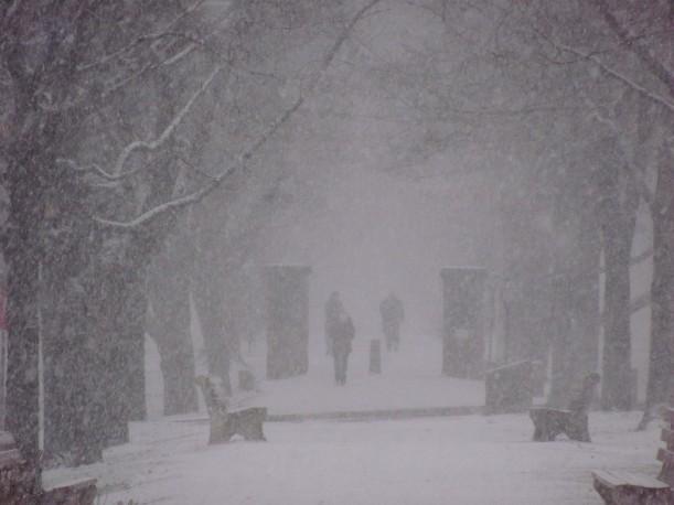 snow0004