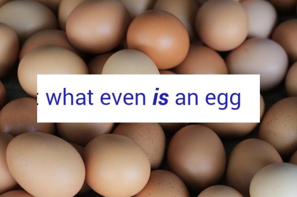 I gotta know. (via eggaesthetic.tumblr.com)